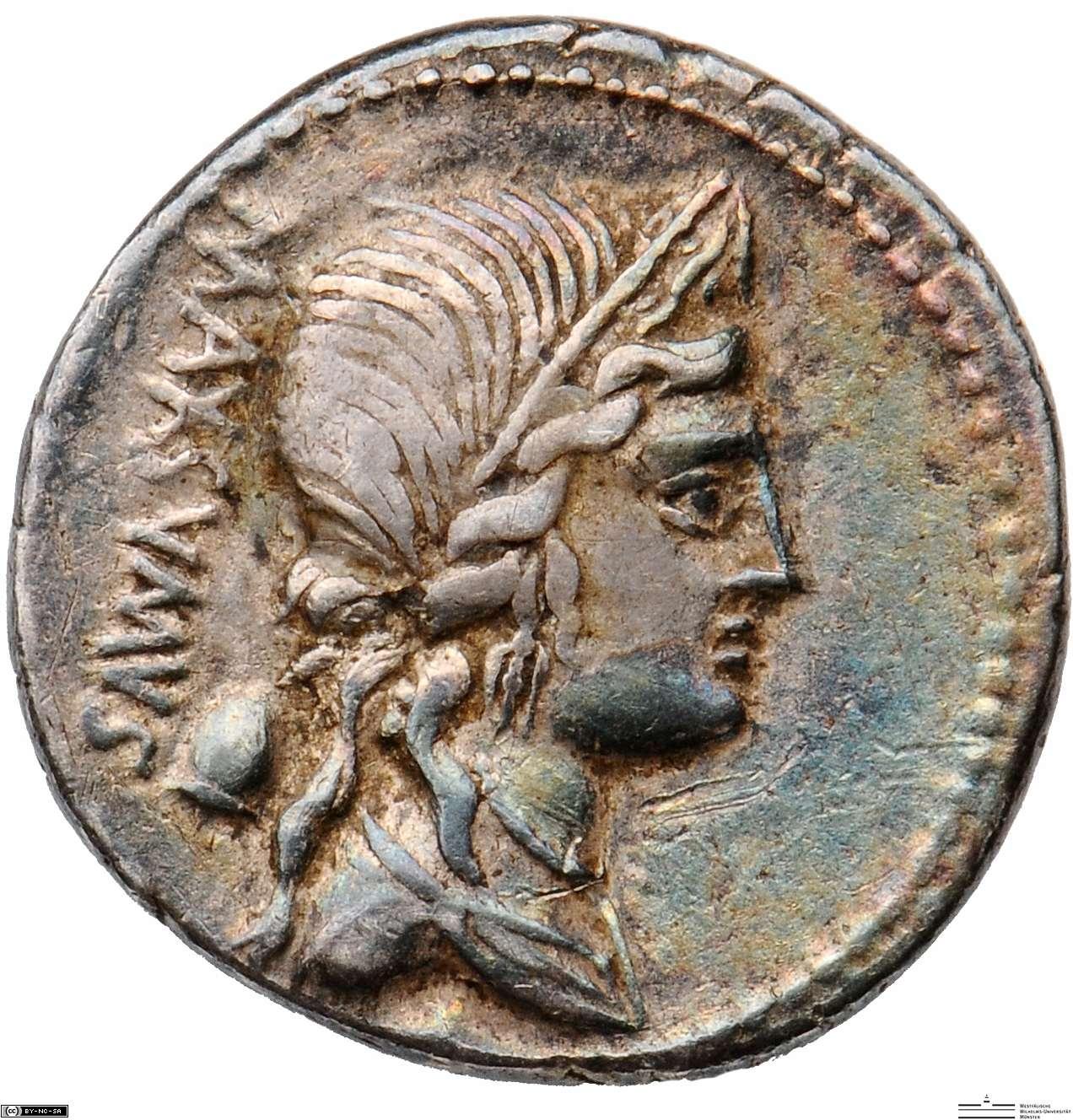 Römische Republik: C. Egnatius Maximus